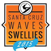 Santa Cruz Wave Swellies